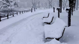 Snow on the bench.Toyama Castle ruins park DSCF9265 Footage