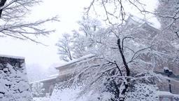 Toyama Castle ruins park DSCF9322 Footage