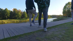 Three males friends walking along the autumn park. Slow motion Steadicam footage Footage