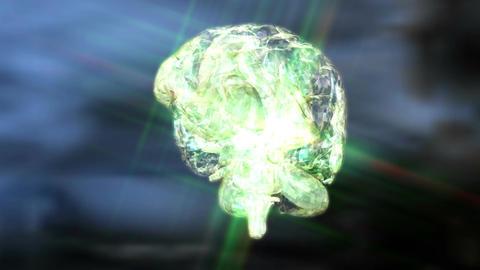 Digital 3D Animation of a human Brain