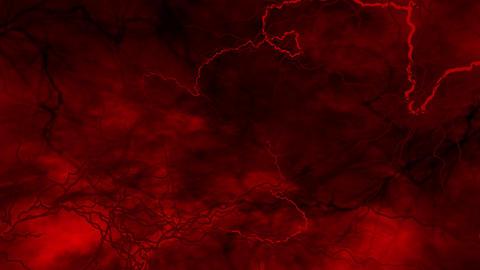 SHA Blood Vessel Image Red CG動画