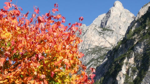 11839 indian summer in dolomites alps Footage