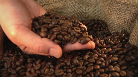 Video of checking coffee beans in real slow motion Live Action