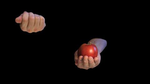 Original sin interpretation - apple and two hands on black Live Action