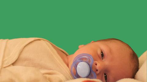 lying newborn baby with papilla chroma key Footage