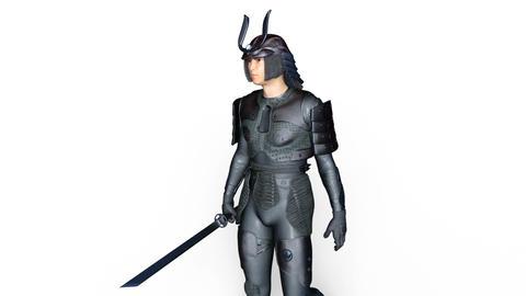 Samurai Gladiator Animation