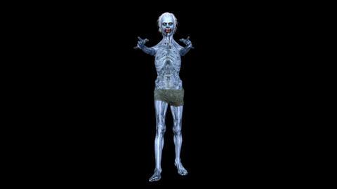 Zombie Walk CG動画