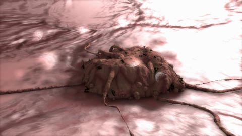 3D rendering cancer cell Animation
