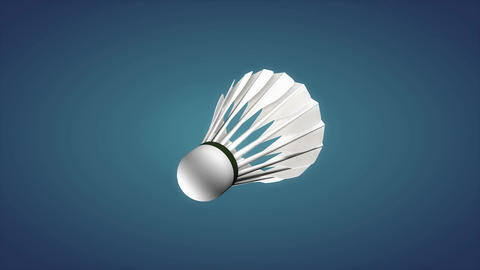 Badminton shuttlecock, sport equipment Animation