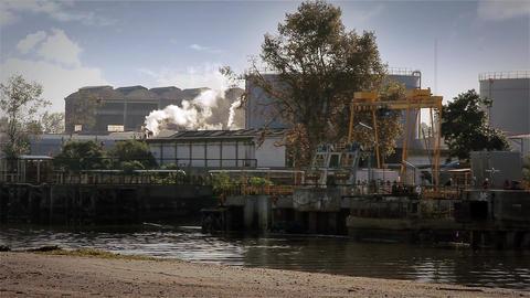 Smoking Industry Footage