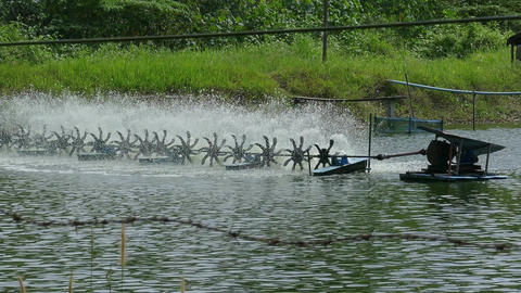 Water aeration turbine in farming aquatic Footage