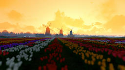 Traditional Dutch windmills with vibrant tulips in the foreground, morning mist, Animation