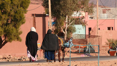 Going women and donkey of Morocco village in Sahara desert Footage
