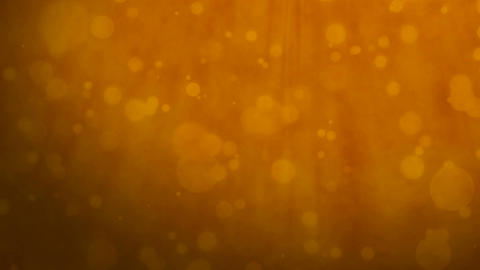 Orange background with floating particles Animation