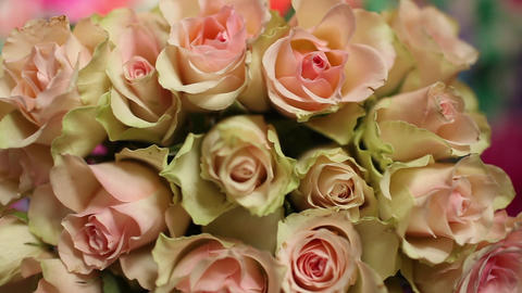 Flowers roses beautiful bouquet Footage