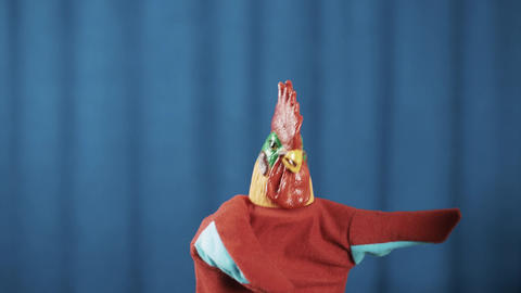 Rooster hand puppet dancing, clap arms and bowing with blue curtains background Footage