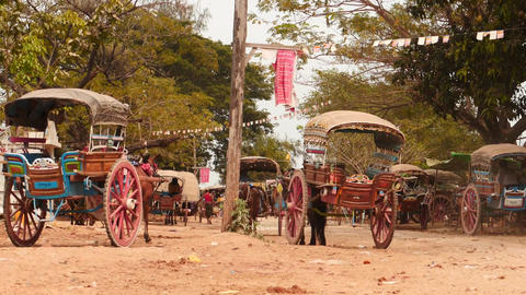Horses with harnessed carriages in Myanmar village near Mandalay Footage