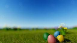 Easter eggs on green meadow over blue blurry sky, tilt Animation