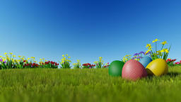 Easter eggs on green meadow over blue sky Animation