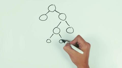 Man hand speed draw branching diagram binar mlm with black marker pen on whitebo Footage