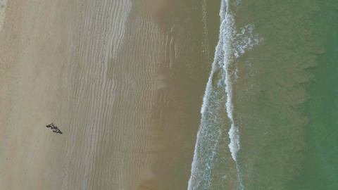 Silhouettes of people from a height of 50 meters on the seashore. Aerial Footage