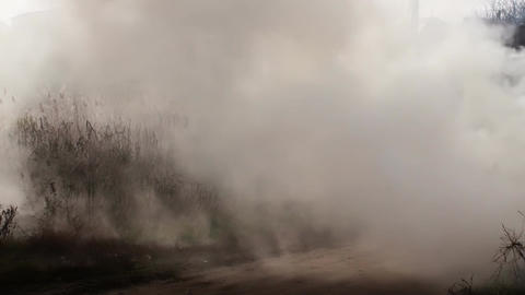 Strong Smoke In The Field Natural Footage