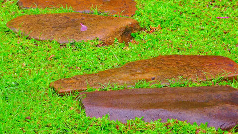 Rainy season in tropics. Zooming video of the stone path at garden after rain Footage