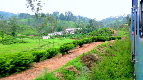 Train passing small village with colorful houses at tea plantations. Sri Lanka Footage