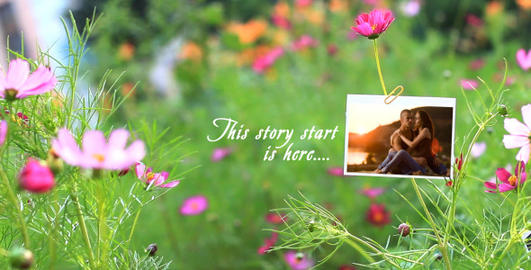 Romantic Flower Photo Gallery After Effects Template