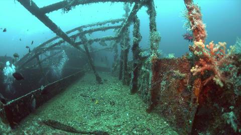 Alma Jane wreck in Puerto Galera, Philippines. 4k Footage