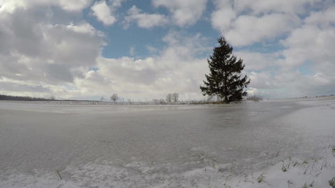 Winter landscape with lonely fir tree in field and clouds motion, time lapse 4K Footage