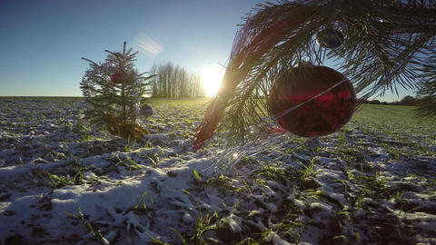 Christmas tree with ornaments and baubles on evening winter field snow, 4K Footage