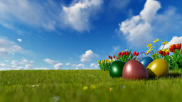 Colorful Easter eggs on green meadow with spring flowers over blue sky Animation