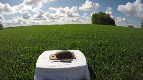 A loaf of bread in wheat field, time lapse 4K Footage