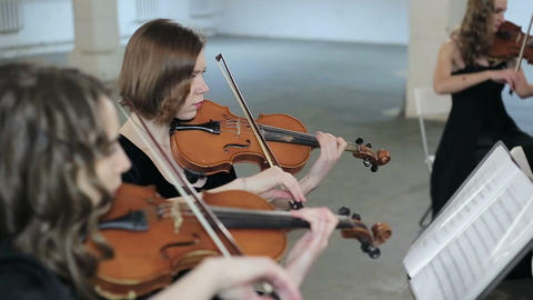Musician playing violin, classic music Live Action