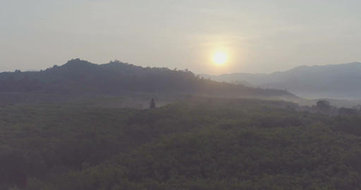 Sun rises above the rainforest. Aerial Footage