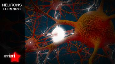 Neurons Plantilla de After Effects