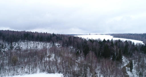 Flight over the winter forest and a ravine Footage