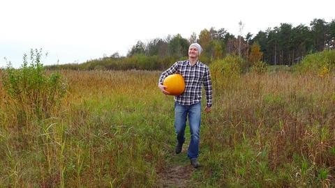 Handsome villager go towards at field path, carry bright pumpkin, autumn season Footage