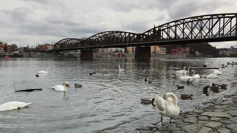 Old iron railway bridge in Prague,Czech Republic Filmmaterial