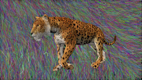leopard drawing animation sketch