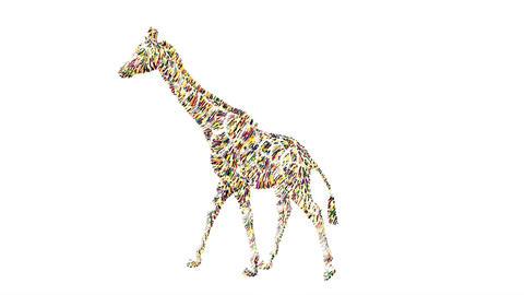 Giraffe drawing animation sketch Animation