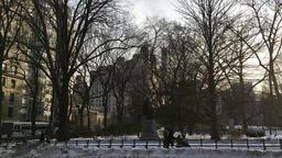 Central park circle at dusk Filmmaterial