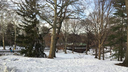 Snowy landscape of Central Park Footage