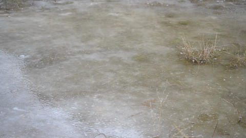 Frozen Puddle Footage