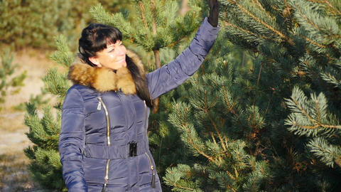 smiling woman lovely touching fir-trees in late autumn forest slomo Footage