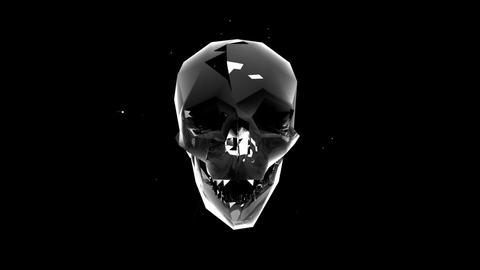Skull face L3 30fps VJLoop LIMEART Footage