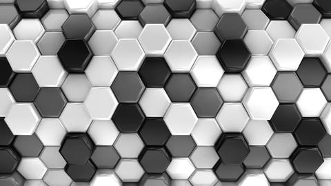 Animated Honeycombs Changes Color Animation