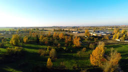 Yellow autumn trees. Fliying around the trees and fields. Aerial footage Footage