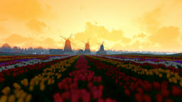 Traditional Dutch windmills with vibrant tulips in the foreground, morning mist Animation